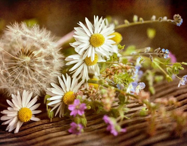 Mood di primavera